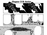 Chapter 310
