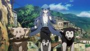 Kite corriendo con los perros