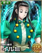 HxH Battle Collection Card (100)