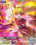 HxH Battle Collection Card (893)