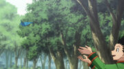 -HorribleSubs- Hunter X Hunter - 15 -720p-.mkv snapshot 02.33 -2012.01.15 11.50.03-