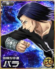 Bara SR(plus) Card