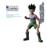 Jump Force - Gon profile