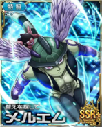 HxH Battle Collection Card (749)