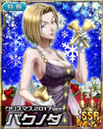 HxH Battle Collection Card (729)