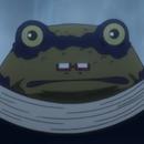 Frog CA Portrait
