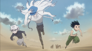 Kite Gon y Killua avanzan
