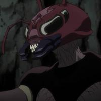 Hormiga Quimera Reina rostro