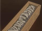 Mummified Right Arm