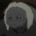 Turtle rostro