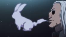 Morel conejo de humo