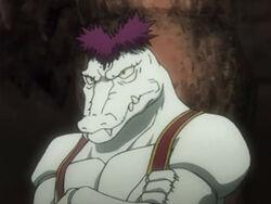 Alligator face