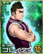 HxH Battle Collection Card (787)