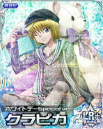 HxH Battle Collection Card (875)