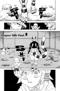 Chapter 308 cover English