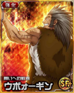 HxH Battle Collection Card (786)