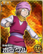 HxH Battle Collection Card (510)