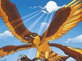 Sunhawk