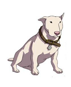 Eathon the dog