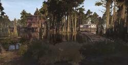 Catfish Grove
