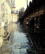 Damascus10