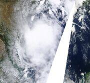 Tropical Storm Don Jul 29 Peak