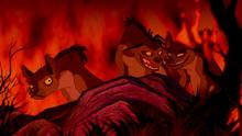 End of Hyenas