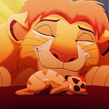 The lion king simba and timon by xdisney-d4fek0q