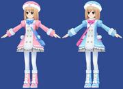 Ram and Rom model
