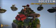 Boletum_(BedWars)