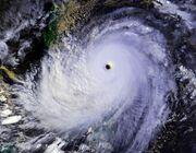 Typhoon Nina 25 nov 1987 0702Z.jpg