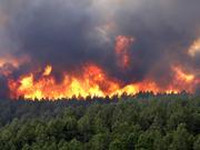 Wildfire-colorado-springs