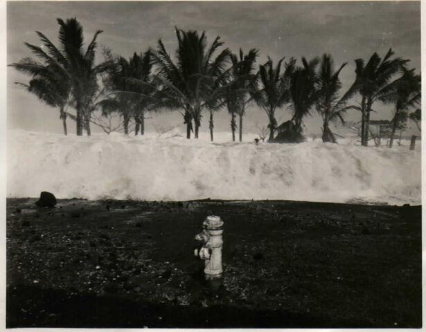 File:Trivinnia tsunami.jpg