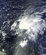 Tropical Storm Ophelia Sept 24 2011 1420Z.jpg