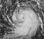 Typhoon Olga 1999.jpg