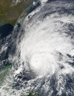 Hurricane Michelle 2001