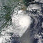 Typhoon saomai 2006.jpg