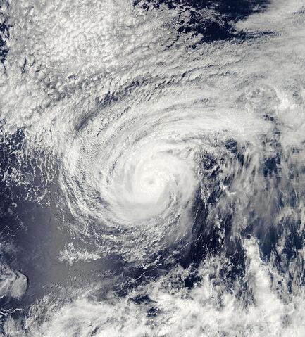 File:Hurricane Fernanda 2005.jpg