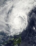 Typhoon Muifa 2004.jpg
