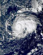 Omeka 2010-12-19 0057Z