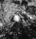 Tropical Depression One-C (1998).JPG