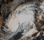 Storm Dawn 1998.jpeg
