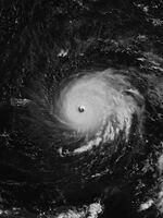 Irma 2017-09-06 0536Z.jpg