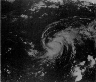 File:Hurricane Chantal (1983).JPG