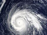 2008 Pacific typhoon season