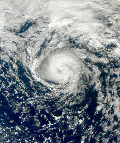File:Tropical Storm Grace 2009 at peak intensity.jpg