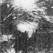 File:Hurricane Katrina of 1981.JPG