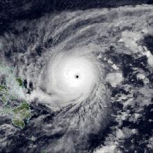 Irma Nov 22 1981 1200Z