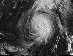 Typhoon Opal