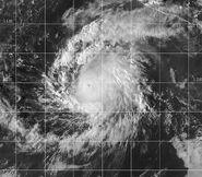 Hurricane Patricia (2003)
